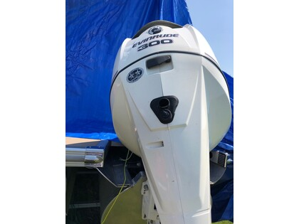 New & Used Evinrude for sale in Alberta | autoTRADER ca