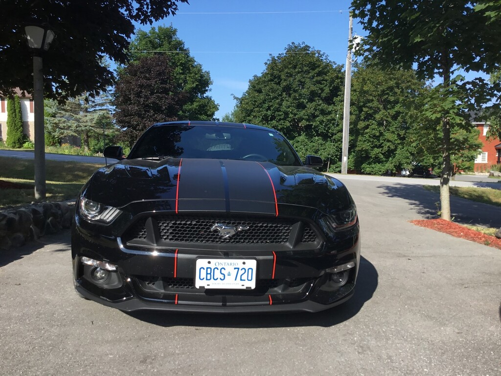 2016 Ford Mustang 2dr Fastback GT - Omemee