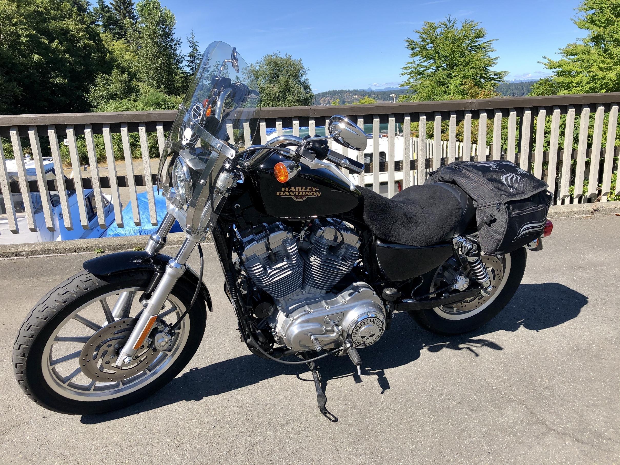 2009 Harley Davidson Sportster Xl883l Low Sportster Campbell River